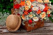 Carl, FLOWERS, photos, SWLA12040,#f# Blumen, Natur, flores, naturaleza