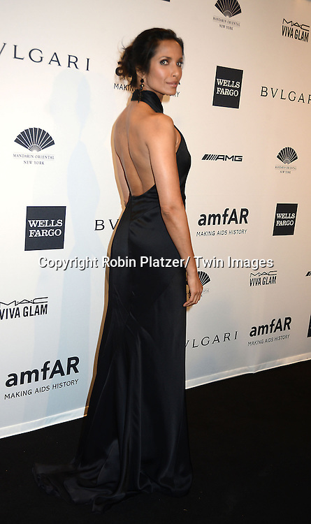 Padma Lakshmi attends the amfAR New York Gala on February 5, 2014 at Cipriani Wall Street in New York City.
