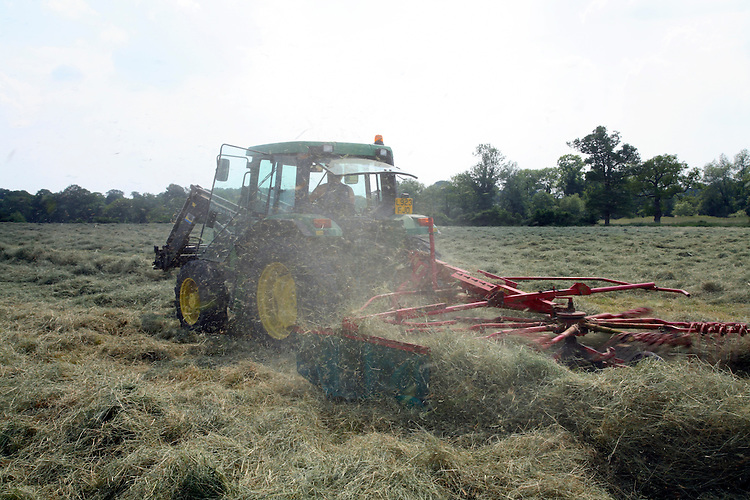 Photograph showing farmer driving tractor with rake attached to the rear rowing hay in a summer field ready for baling