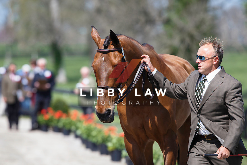 USA-Bruce Davidson JR (BALLYNOE CASTLE RM) THE JOG: 2015 USA-Rolex Kentucky Three Day Event CCI4* (Wednesday 22 April) CREDIT: Libby Law COPYRIGHT: LIBBY LAW PHOTOGRAPHY