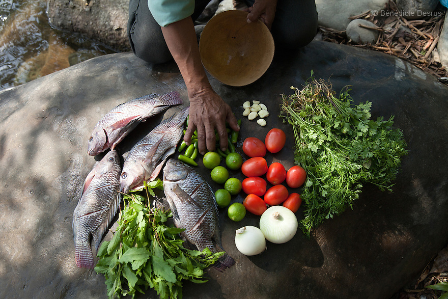 Ingredients for caldo de piedra are arrayed on a boulder at the edge of the Usila river  in San Felipe Usila, Mexico on March 30, 2016. Caldo de piedra, or stone soup, is an ancestral dish of the indigenous Chinantec people of San Felipe Usila, a remote village in northern Oaxaca state, Mexico. Traditionally prepared by men in a ritual that dates back to pre-Hispanic times, the soup is cooked in jícara (gourds) by glowing-hot white river rocks that have been heated on a bonfire of orangewood. Ingredients include whole mojarra fish, tomatoes, onion, garlic, chile, epazote, cilantro and fresh water; the soup is seasoned with lime and salt and eaten on the banks of the Usila river. Photo by Bénédicte Desrus