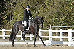 Class 7. British dressage. Brook Farm Training Centre. Essex. UK. 26/10/2018. ~ MANDATORY Credit Garry Bowden/Sportinpictures - NO UNAUTHORISED USE - 07837 394578