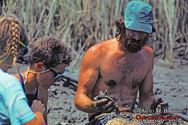 Earthwatcher and Tony Tucker Removing Terrapin Turtles From Nets