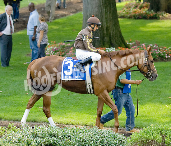 Love That Dance in the paddock before The Endine Stakes (Gr 3) winning at Delaware Park on 8/20/11.
