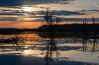 The sun rises over a wetland swollen by recent rain next to the Portage River in Jackson County, Michigan