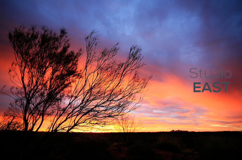 The sun sets in the desert near Ayers Rock, or Uluru, Northern Territory, Australia, on December 31, 2008. Photo by Lucas Schifres/Pictobank