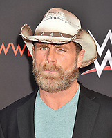 NORTH HOLLYWOOD, CA - JUNE 06: Shawn Michaels attends WWE's first-ever Emmy 'For Your Consideration' event at Saban Media Center on June 6, 2018 in North Hollywood, California.<br /> CAP/ROT/TM<br /> &copy;TM/ROT/Capital Pictures