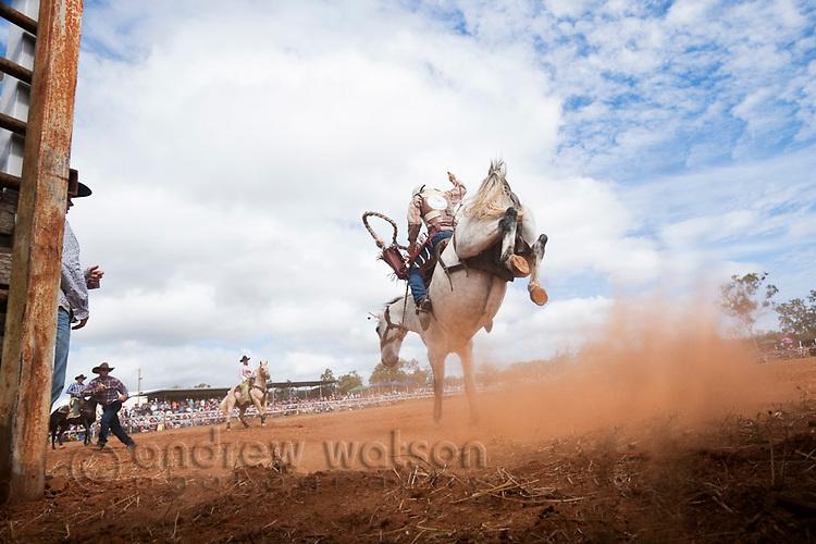 Bareback bronc rider in action at Mt Garnet Rodeo.  Mt Garnet, Queensland, Australia
