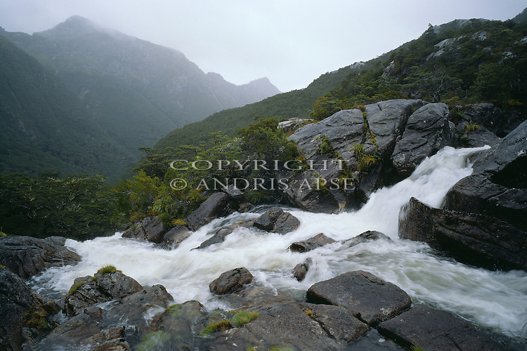 Small rapid in river. Upper Freeman Valley. Fiordland National Park. New Zealand.