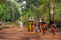 INDIA Chhattisgarh, Bastar, tribal Gond women coming from market, drunken man with stick / INDIEN Chhattisgarh , Bastar, Adivasi, indische Ureinwohner, Gond Frauen kommen vom Markt