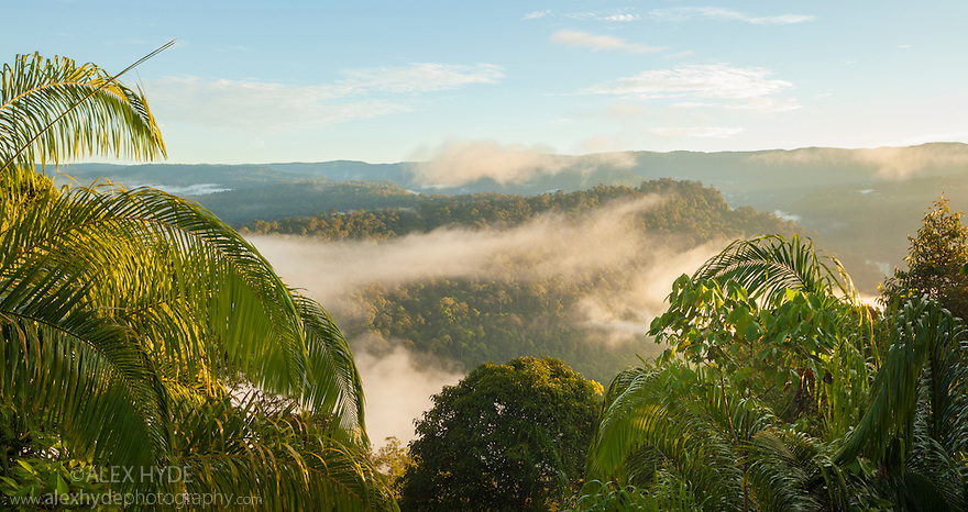 The rim of Maliau Basin (visible at back of image) towers above the area of dense rainforest that it encloses. Maliau Basin, Sabah's 'Lost World', Borneo, Malaysia.