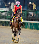 September 3, 2020: Major Fed exercises as horses prepare for the 2020 Kentucky Derby and Kentucky Oaks at Churchill Downs in Louisville, Kentucky. The race is being run without fans due to the coronavirus pandemic that has gripped the world and nation for much of the year. Scott Serio/Eclipse Sportswire/CSM
