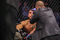 NOVA YORK, EUA, 02.11.2019 - UFC-NOVA YORK - Brad Tavares (vermelho) e  Edmen Shahbazyan (azul) durante UFC 244 no Madison Square Garden na cidade de Nova York neste sábado, 02. (Foto: Vanessa Carvalho/Brazil Photo Press/Folhapress)