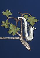 Europe/France/Champagne-Ardenne/51/Marne/Hautvilliers: Enseigne vigneron - feuille de vigne et saxophone