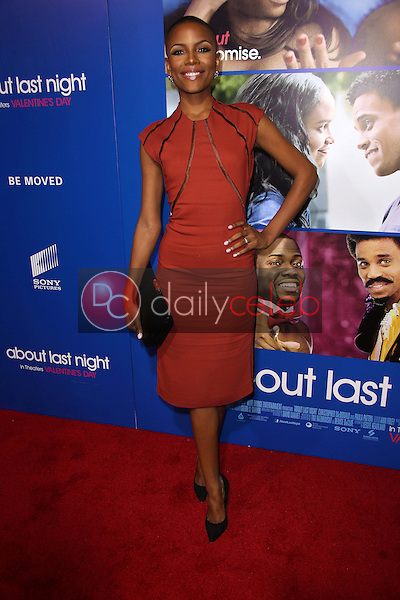 Tracey Graves<br /> at the &quot;About Last Night&quot; Los Angeles Premiere, Arclight, Hollywood, CA 02-11-14<br /> David Edwards/Dailyceleb.com 818-249-4998
