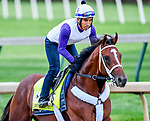 LOUISVILLE, KENTUCKY - MAY 01: Maximum Security, trained by Jason Servis, exercises in preparation for the Kentucky Derby at Churchill Downs in Louisville, Kentucky on May 1, 2019. John Voorhees/Eclipse Sportswire/CSM