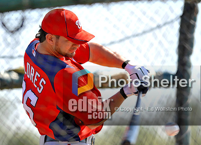24 February 2012: Washington Nationals' catcher Jesus Flores takes batting practice at the Carl Barger Baseball Complex in Viera, Florida. Mandatory Credit: Ed Wolfstein Photo