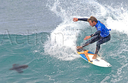 13 April 2006: A turtle narrowly avoids a surfer on his board in the Rip Curl Pro Surfing Championships at Bells Beach, Torquay, Australia. Photo: Peter Downing/Action Plus..surfing 060413 turtle surf wave funnies....