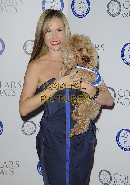 Amanda Holden.Attending the Battersea Dogs & Cats Home 'Collars & Coats Gala Ball 2012' held at Battersea Evolution, London, England, UK, 8th November 2012.half length blue corset strapless holding dog animal bow bows dress .CAP/CAN.©Can Nguyen/Capital Pictures.
