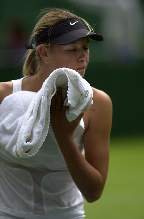 Photo: Richard Lane..DFS Classic Women's International Tennis at Edgebaston. 10/06/2003..Maria Sharapova.