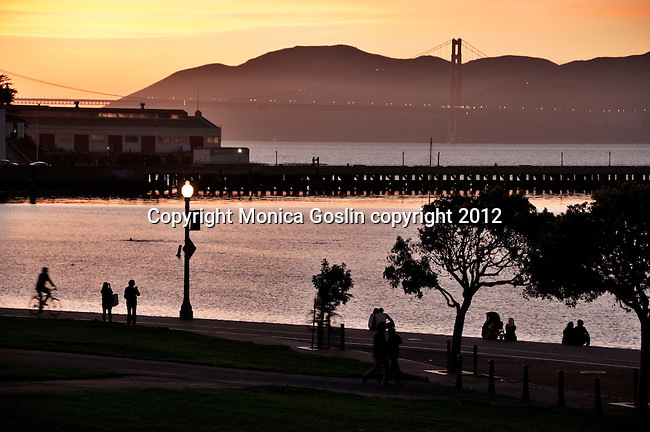 Golden Gate Bridge in San Francisco, California at sunset with the park in the foreground