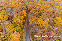 63876-02610 Aerial view of fall color trees and road Stephen A. Forbes State Park Marion Co. IL