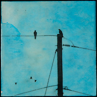 Photo transfer of crows on telephone poles over encaustic painting of turquoise blue sky.
