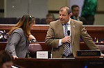 Nevada Assembly Minority Leader Marilyn Kirkpatrick, D-North Las Vegas, and Majority Leader Paul Anderson, R-Las Vegas, talk on the Assembly floor at the Legislative Building in Carson City, Nev., on Friday, April 3, 2015. <br /> Photo by Cathleen Allison