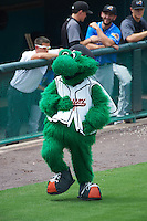 Bowie Baysox Louie during the first game of a doubleheader against the Akron RubberDucks on June 5, 2016 at Prince George's Stadium in Bowie, Maryland.  Bowie defeated Akron 6-0.  (Mike Janes/Four Seam Images)