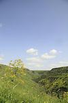 Golan Heights, Nahal Daliyot at Gamla Nature Reserve