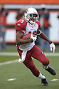 STEVE BREASTON, of the Arizona Cardinals, in action during their game against the Cincinnati Bengals on November 18, 2007 in Cincinnati, Ohio...Cardinals win 35-27..SportPics