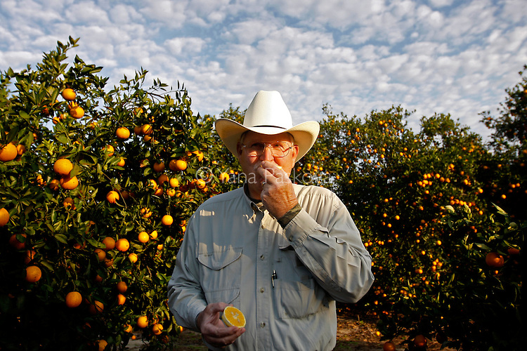 Victor Story Jr., the owner of the Story Family Orange Grove, tastes one of his oranges as U.S. Presidential hopeful Mike Huckabee (R-AR) tours his grove with growers from Florida Citrus Mutual in South Lake Wales, Florida, on Saturday, January 26, 2008. (Photo by: Yana Paskova for The New York Times)..Assignment ID: 30055282P..                                 ...........