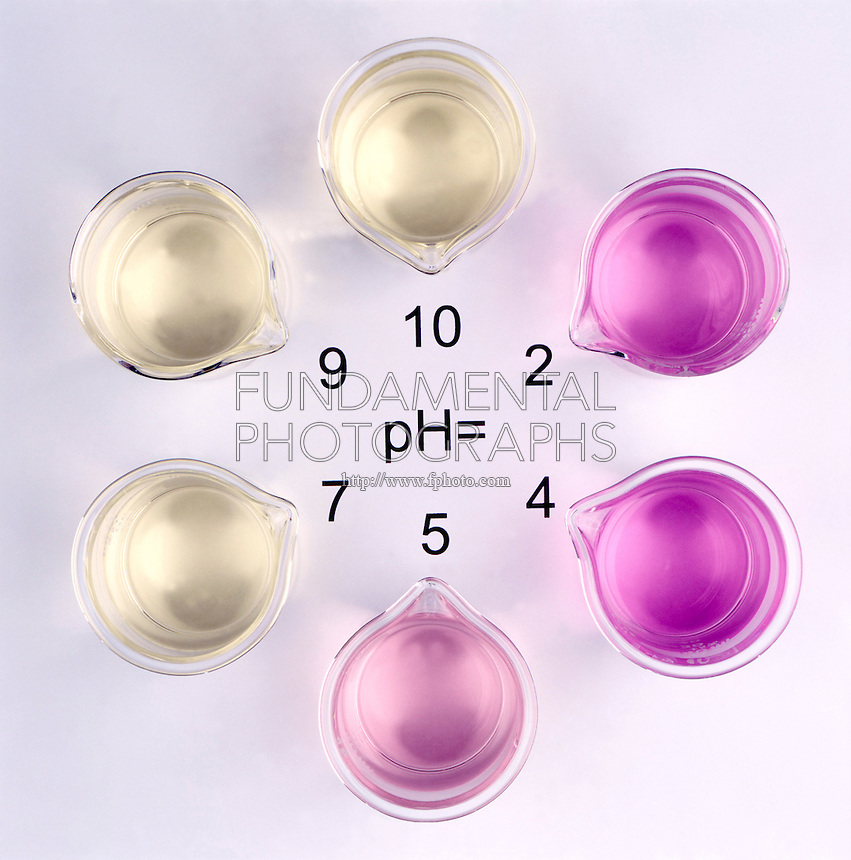 pH INDICATOR: Range Of Methyl Red (1 of 3)<br />