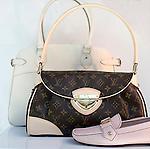 Shopping, Louis Vuitton, Mall at Millenia, Orlando, Florida