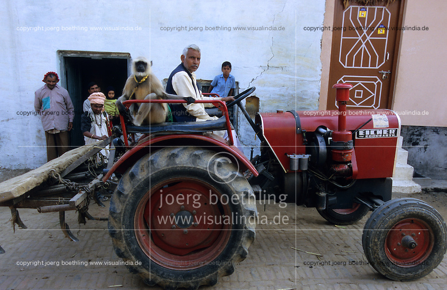 INDIA UP Meerut, Eicher tractor woth monkey in village / INDIEN Eicher Traktor mit Affe in einem Dorf