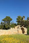 Israel, ruins of a Byzantine-Crusader Basilica at Emmaus-Nicopolis
