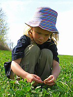 Mädchen, Kind erntet Kräuter, Kräuter im Frühjahr sammeln für Kräutersuppe und Wildgemüse-Salat, Kräutersammeln