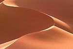 Khongoryn sand dunes, Gobi Gurvansaikhan National Park, Mongolia