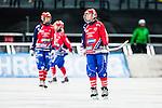 Solna 2014-03-15 Bandy SM-final Damer Kareby IS - AIK  :  <br /> Karebys Elin Sandgren deppar<br /> (Foto: Kenta J&ouml;nsson) Nyckelord:  SM SM-final final dam damer Kareby AIK depp besviken besvikelse sorg ledsen deppig nedst&auml;md uppgiven sad disappointment disappointed dejected