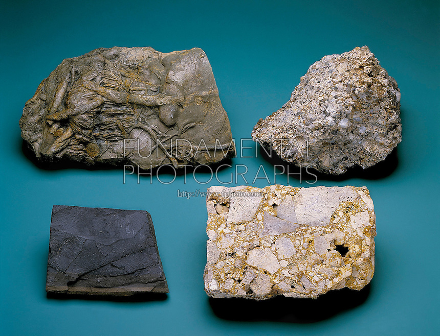 Sedimentary Rock Mineral Science Fundamental Photographs The Art
