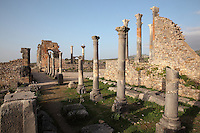 Corinthian colonnade along the Capitoline Temple (right), built 218 AD on an existing shrine, with the Roman Basilica, 217 AD, used for courts of justice and city governance, in the distance, Volubilis, Northern Morocco. Volubilis was founded in the 3rd century BC by the Phoenicians and was a Roman settlement from the 1st century AD. Volubilis was a thriving Roman olive growing town until 280 AD and was settled until the 11th century. The buildings were largely destroyed by an earthquake in the 18th century and have since been excavated and partly restored. Volubilis was listed as a UNESCO World Heritage Site in 1997. Picture by Manuel Cohen