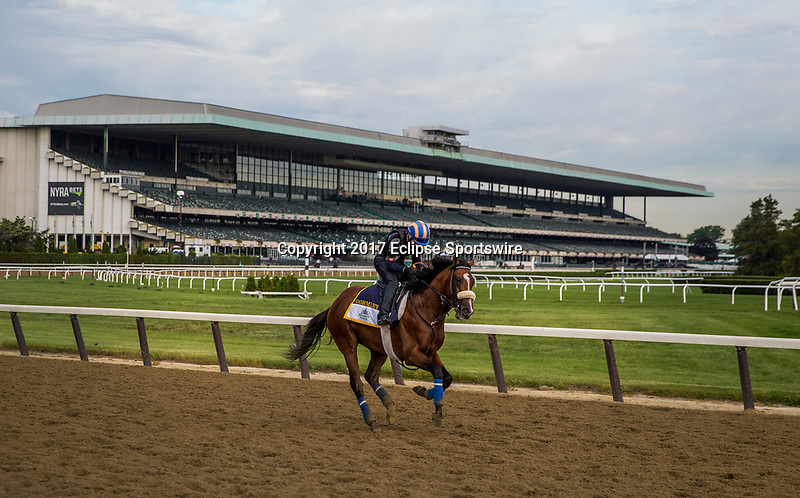 ELMONT, NY - JUNE 09: Gormley gallops in preparation for the Belmont Stakes at Belmont Park on June 9, 2017 in Elmont, New York. (Photo by Alex Evers/Eclipse Sportswire/Getty Images)