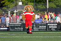 Rochester, NY - Friday June 17, 2016: Western New York Flash mascot prior to a regular season National Women's Soccer League (NWSL) match between the Western New York Flash and the Portland Thorns FC at Rochester Rhinos Stadium.