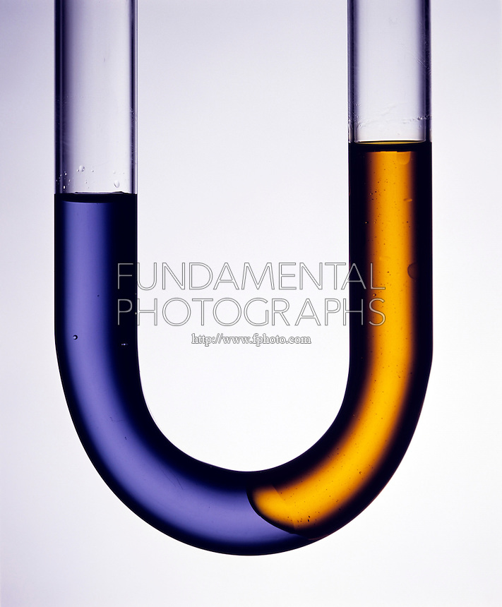 EQUILIBRIUM: OIL & WATER IN U-TUBE Immiscibility<br /> Oil (orange) and water (purple) establish state of equilibrium. Oil is less dense than water and floats on top of water.