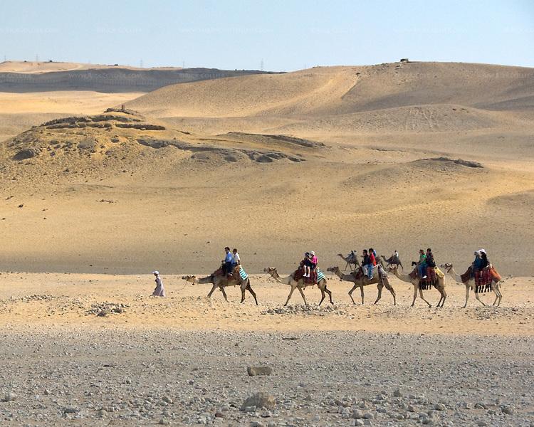 Giza, Cairo, Egypt -- Locals lead tourists on camel rides near the pyramids at Giza. © Rick Collier / RickCollier.com.