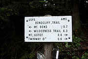 Bondcliff Trail during the summer months. Located in the White Mountains, New Hampshire USA.
