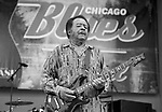 CHICAGO, june 9, 2013 : Final night of Chicago Blues Festival with a Chicago Blues All-Star lineup : Jimmy Burns, Jimmy Johnson, Billy Branch, James Cotton, Eddy &quot;The Chief&quot; Clearwater, Lil' Ed, John Primer, Deitra Farr, Demetria Taylor, Matt SKoller, Billy Flynn.<br /> 84 years old Jimmy Johnson on stage.