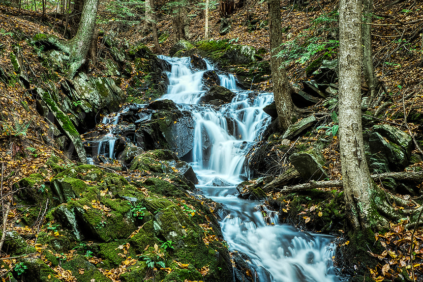 Mountain stream cascades over downstream rocks, Vermont, USA.