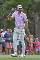 Dustin Johnson (USA) watches his tee shot on 12 during round 3 of The Players Championship, TPC Sawgrass, at Ponte Vedra, Florida, USA. 5/12/2018.<br /> Picture: Golffile | Ken Murray<br /> <br /> <br /> All photo usage must carry mandatory copyright credit (&copy; Golffile | Ken Murray)