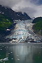July 17 thru 23 / Alaska / Vacation and stock photography / Cascade and Barry Glaciers / Harriman Fjord, Alaska /  Photo by Bob Laramie
